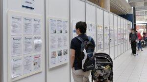 mehrere Personen informieren sich über Jobangebote